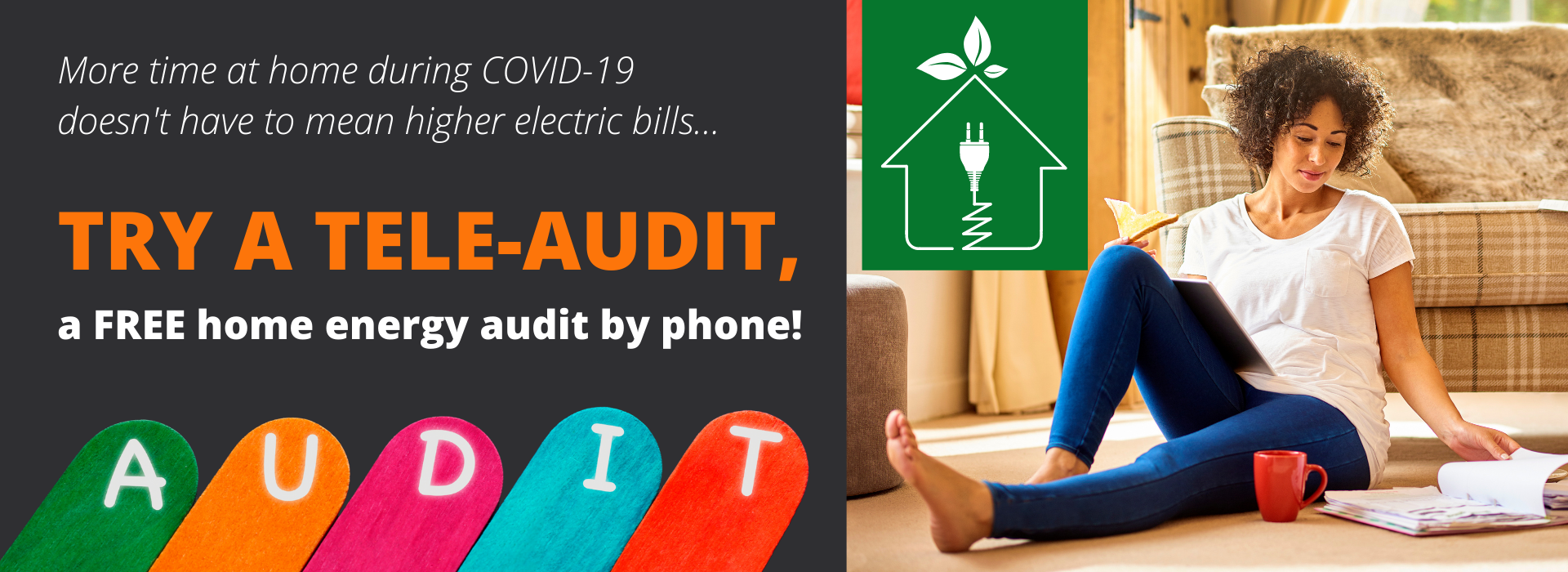 Schedule a tele-audit to see your home's energy use and how you can sav money